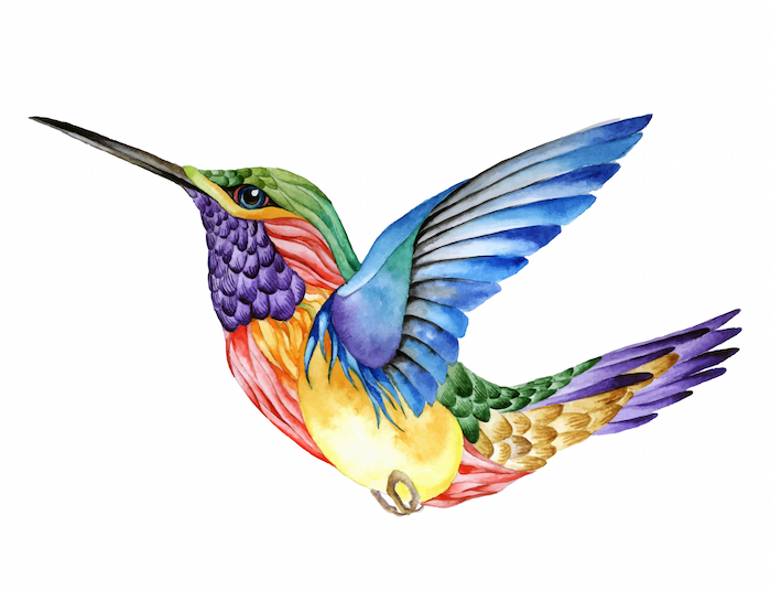 Hummingbird Tattoo Meaning - Tattoos With Meaning