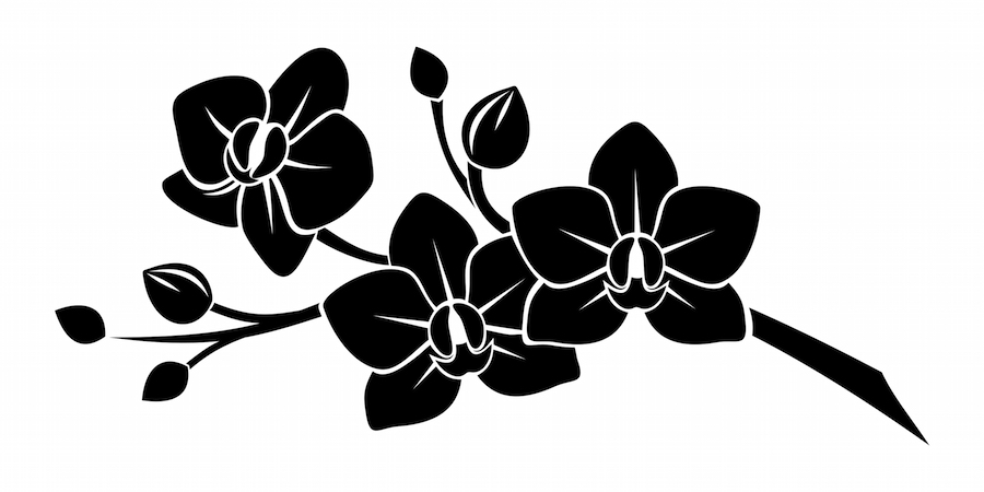 Orchid tattoo meaning tattoos with meaning orchid tattoo mightylinksfo