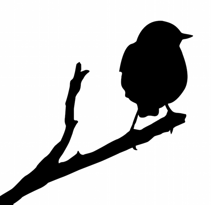 Sparrow Tattoo Meaning Tattoos With Meaning