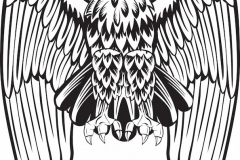Eagle tattoos tattoos with meaning for Tattoos meaning freedom